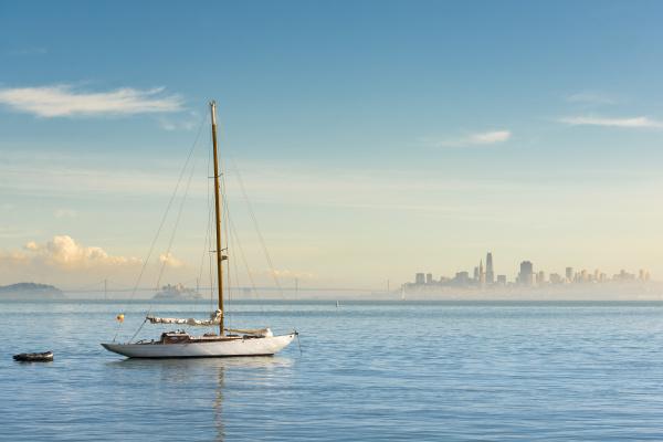 usa california san francisco sailing boat