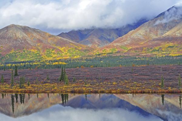 colorful autumn landscape mountain tundra and