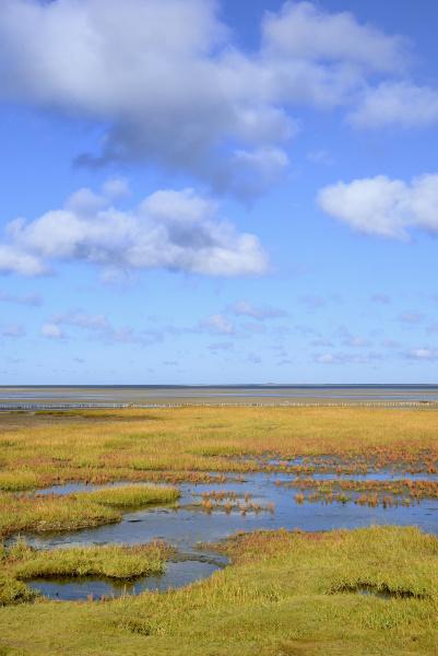 orange horizon national park sights distance