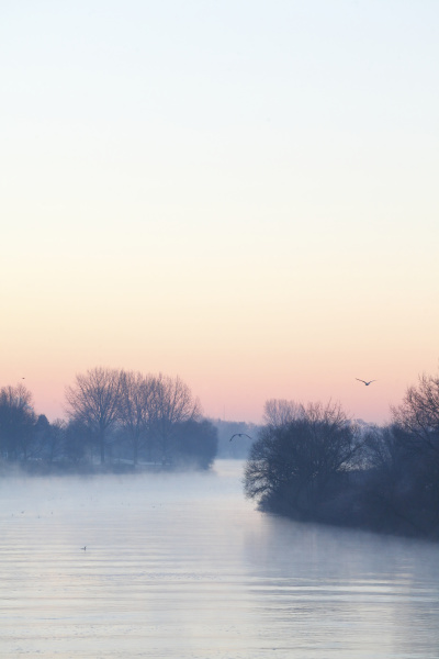 bucolic winter fog europe mood radio