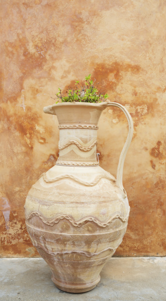 earthenware pot and plant against distressed