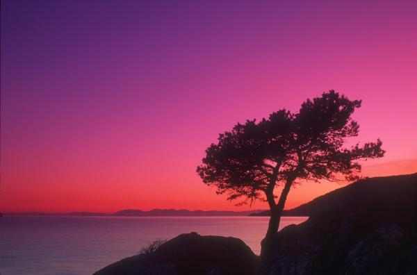 beautiful sunset whytecliff park