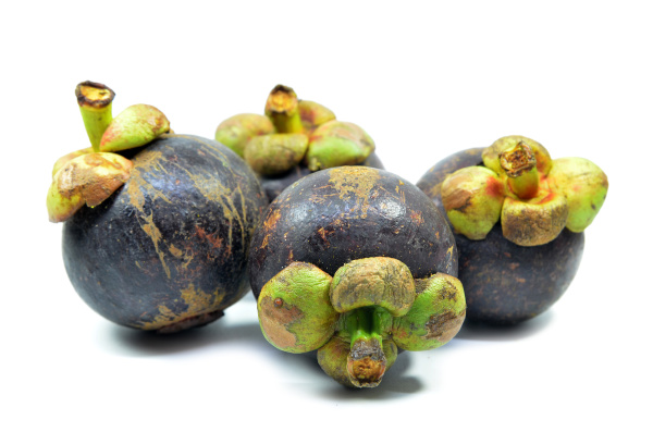 ripe mangosteen fruit isolated