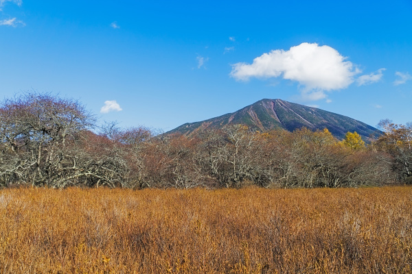 senjogahara grasslands in autumn japan