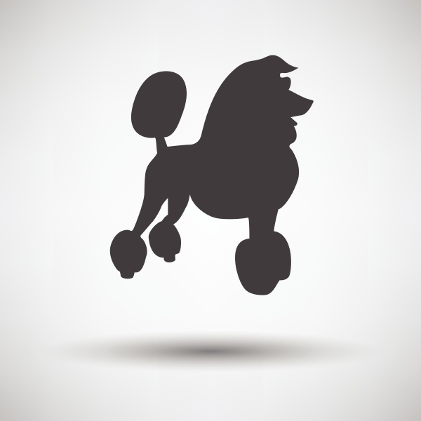 poodle icon on gray background with