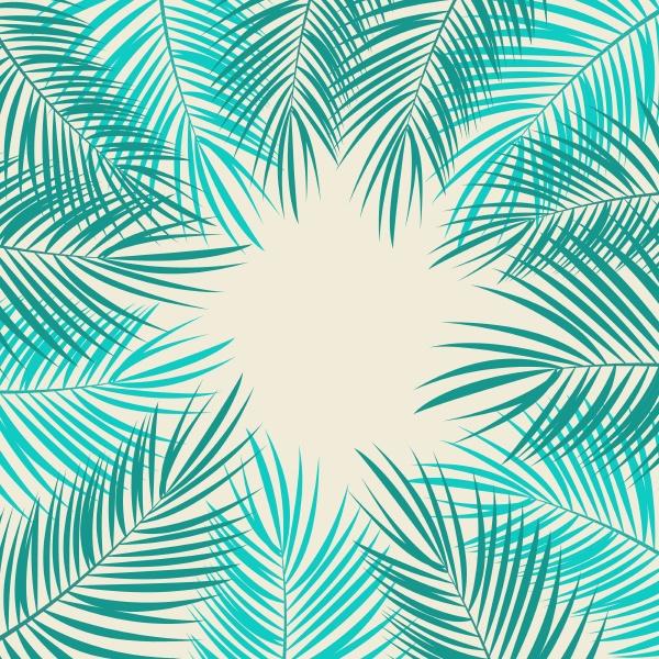 palm leaf vector on background illustration