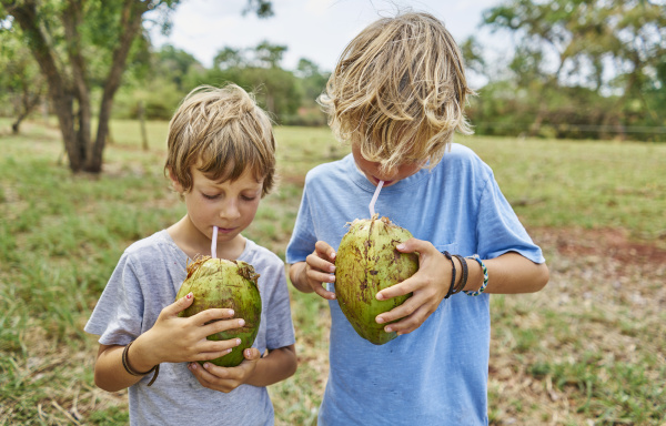 brazil bonito two boys drinking from