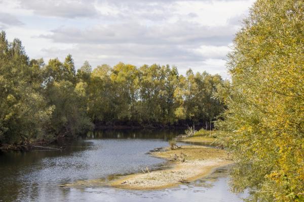nature reserve bislicher insel lower rhine