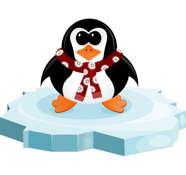 penguin on an ice floe