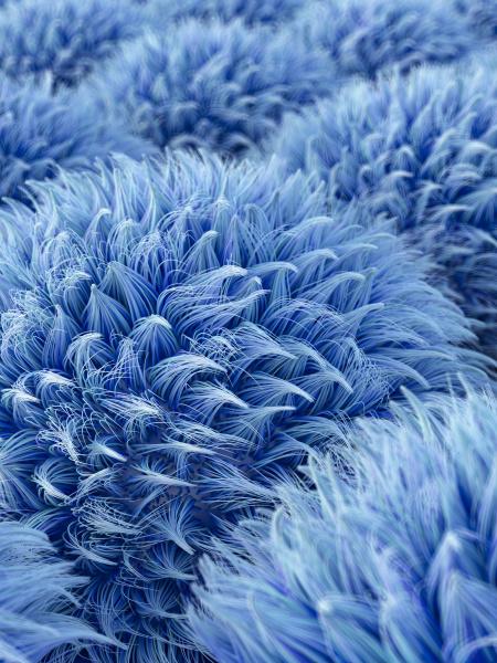 fluffy blue spheres 3d rendering