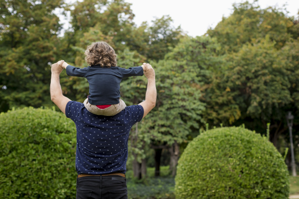 rear view of father carrying son