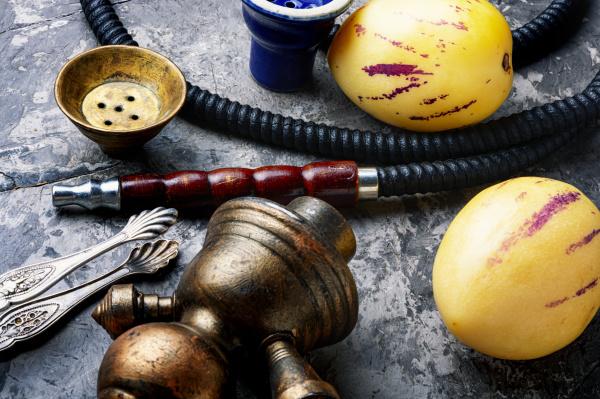 smoking hookah with pepino