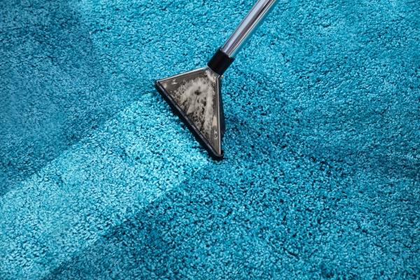 vacuum, cleaner, on, carpet - 27199809