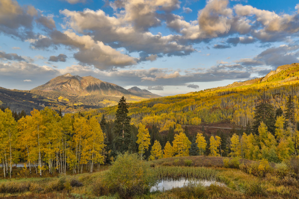 fall colors near kebler pass crested