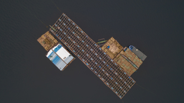 aerial view of a oysters station