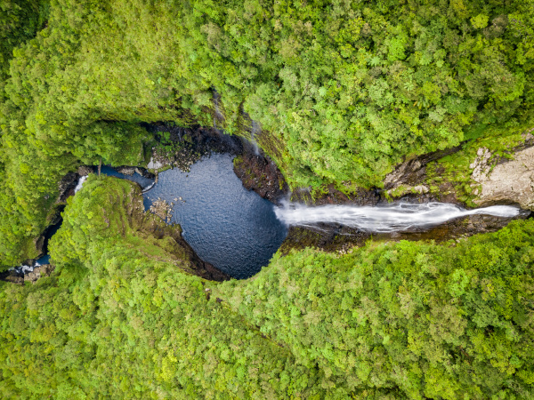 aerial view of waterfall in foret