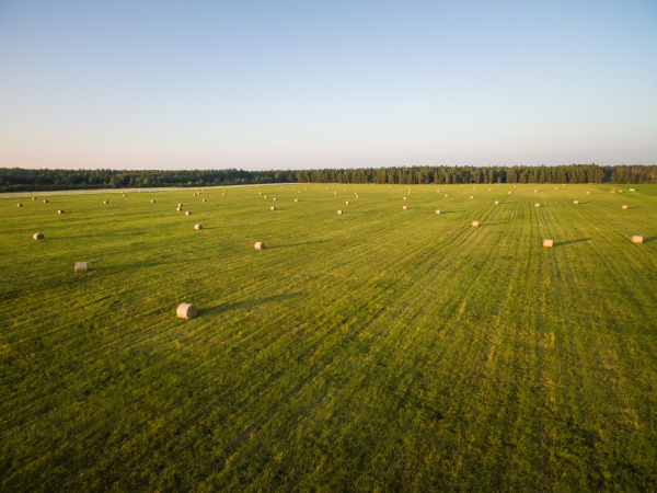 aerial view of straw bales in