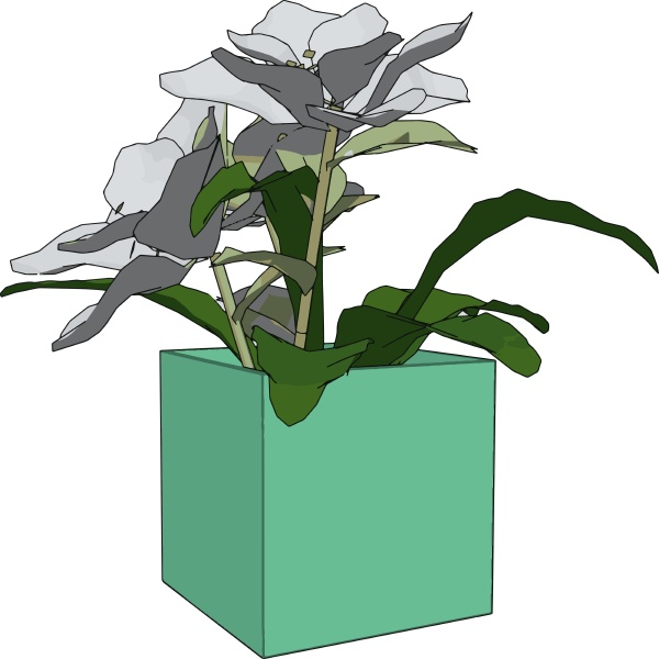 flowers in a pot illustration vector