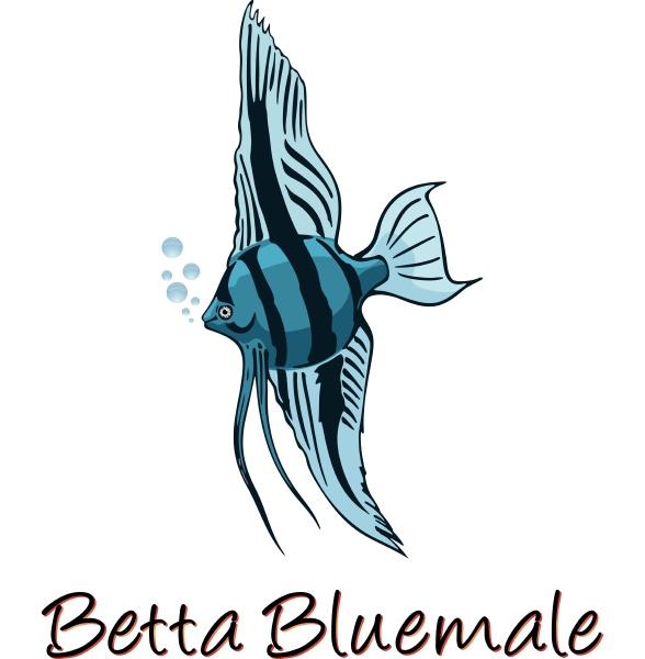 betta color illustration
