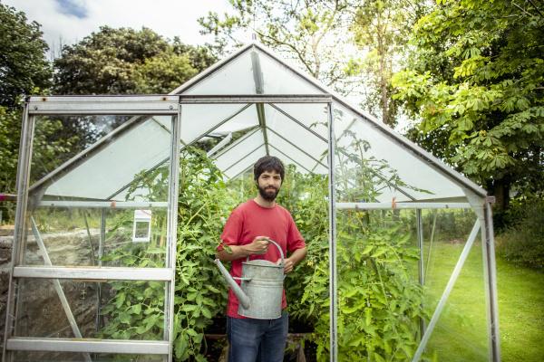 portrait of gardener watering tomatoes in