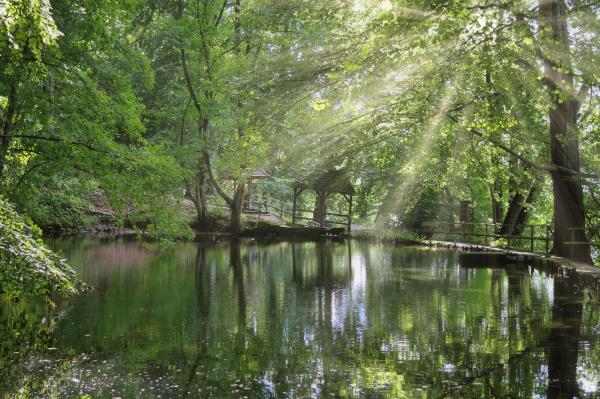 historic fish ponds called spiegelteiche malente