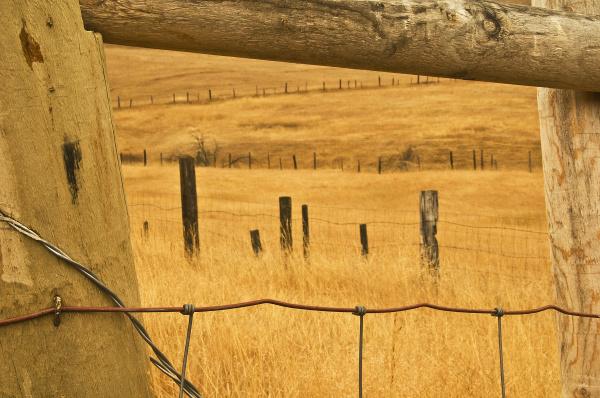 usa montana old fence framing other