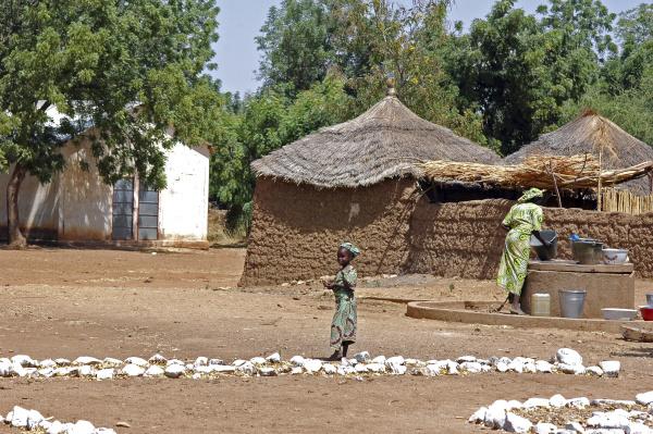 cameroon gayak traditional african village scene