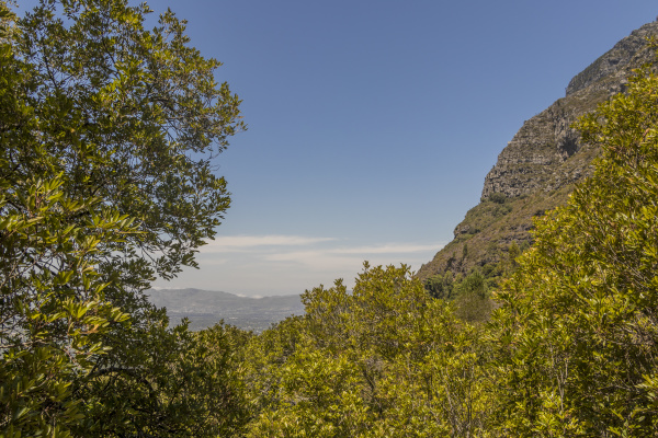 view from table mountain national park