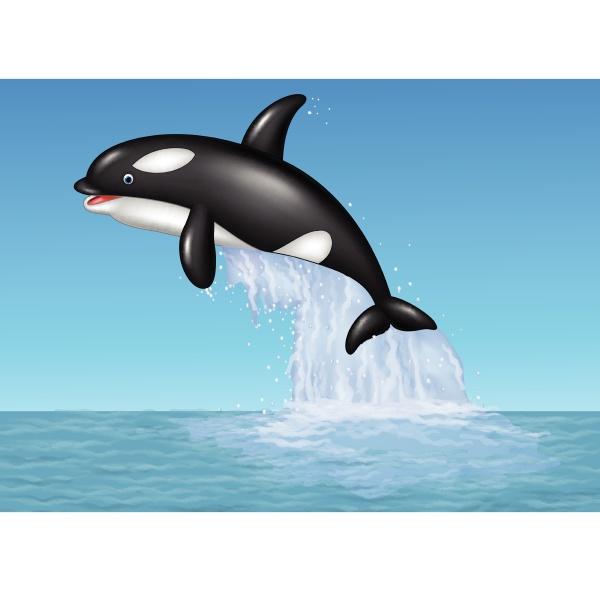 cartoon orca jumping on the blue