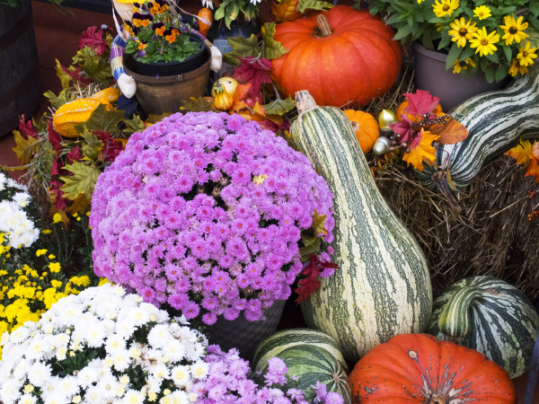 tennessee gatlinburg halloween decorations