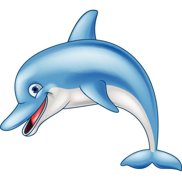 funny dolphin cartoon