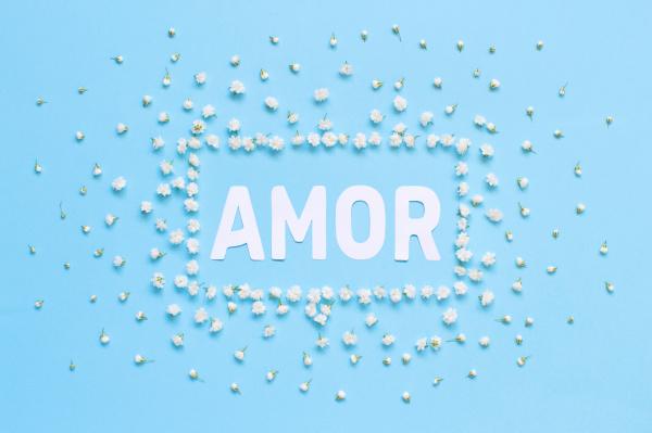 rectangular floral frame and text amor