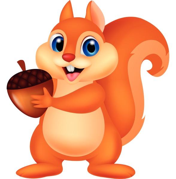 cute squirrel holding nut
