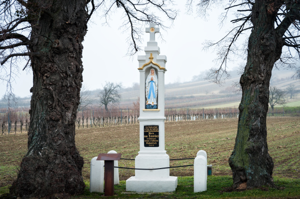 waycross with statue of mother marie