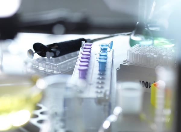 high angle view of various laboratory