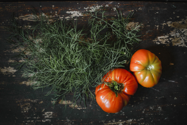 directly above shot of tomatoes with