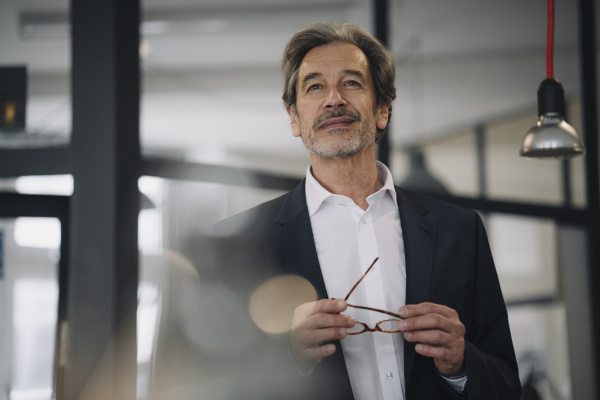 portrait of confident senior businessman in