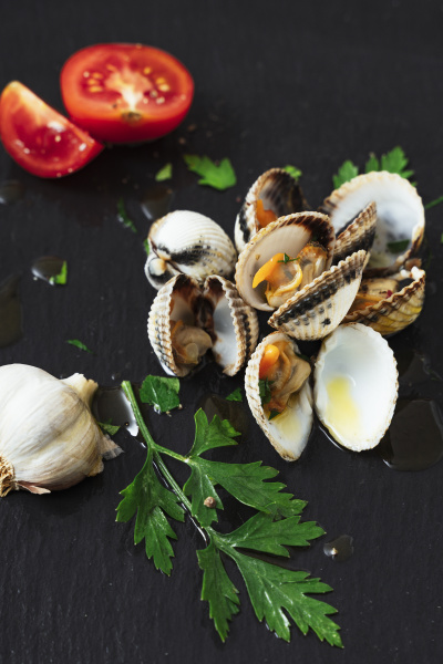 high angle view of clams and