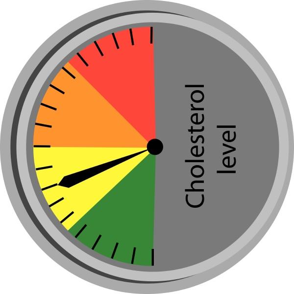 cholesterol level control scale vector