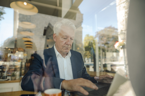 senior businessman using laptop in a