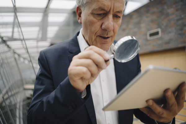 senior businessman with magnifying glass reading
