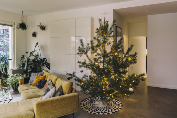 decorated pine christmas tree in living