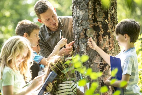 school children examining tree bark in