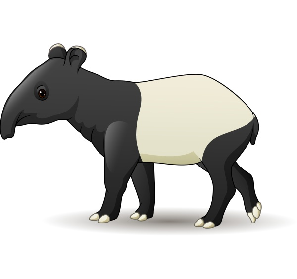 cartoon asian tapir isolated on white