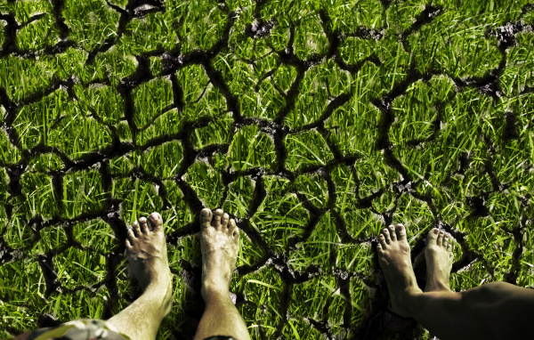 feet standing on the cracked land
