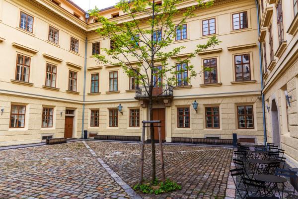 building facade and yard old european