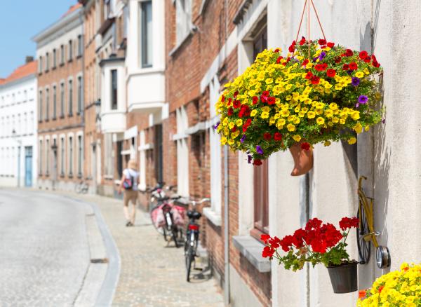 bicycles on cozy street european town