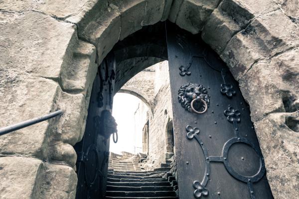door with lions old provincial european