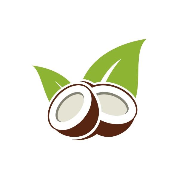 coconut tree logo design nature product