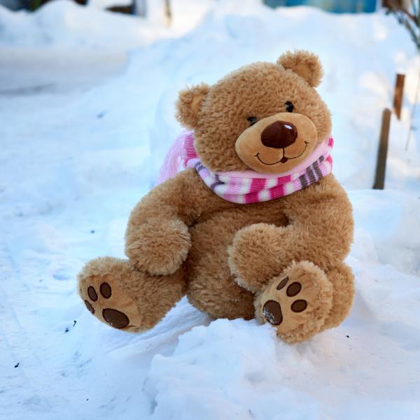 big cute curly teddy bear in